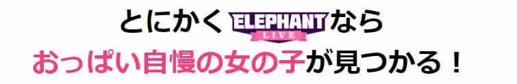ElephantLive感想